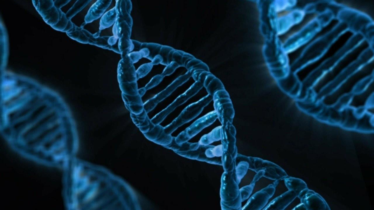 Sahip olduğumuz genlerin yalnızca yüzde 1.5'i modern insanlara özgü