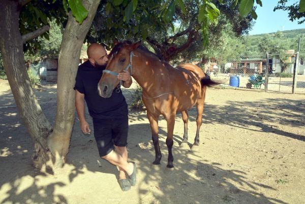 Şiddete uğrayan hayvanlar için kurdu: Unutulmuşlar Kasabası - Sayfa 3