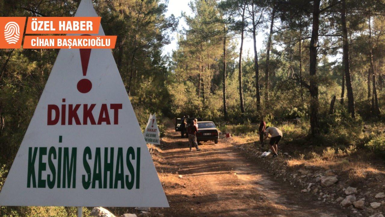 MUÇEP: Ormanı ormancıya karşı savunuyoruz