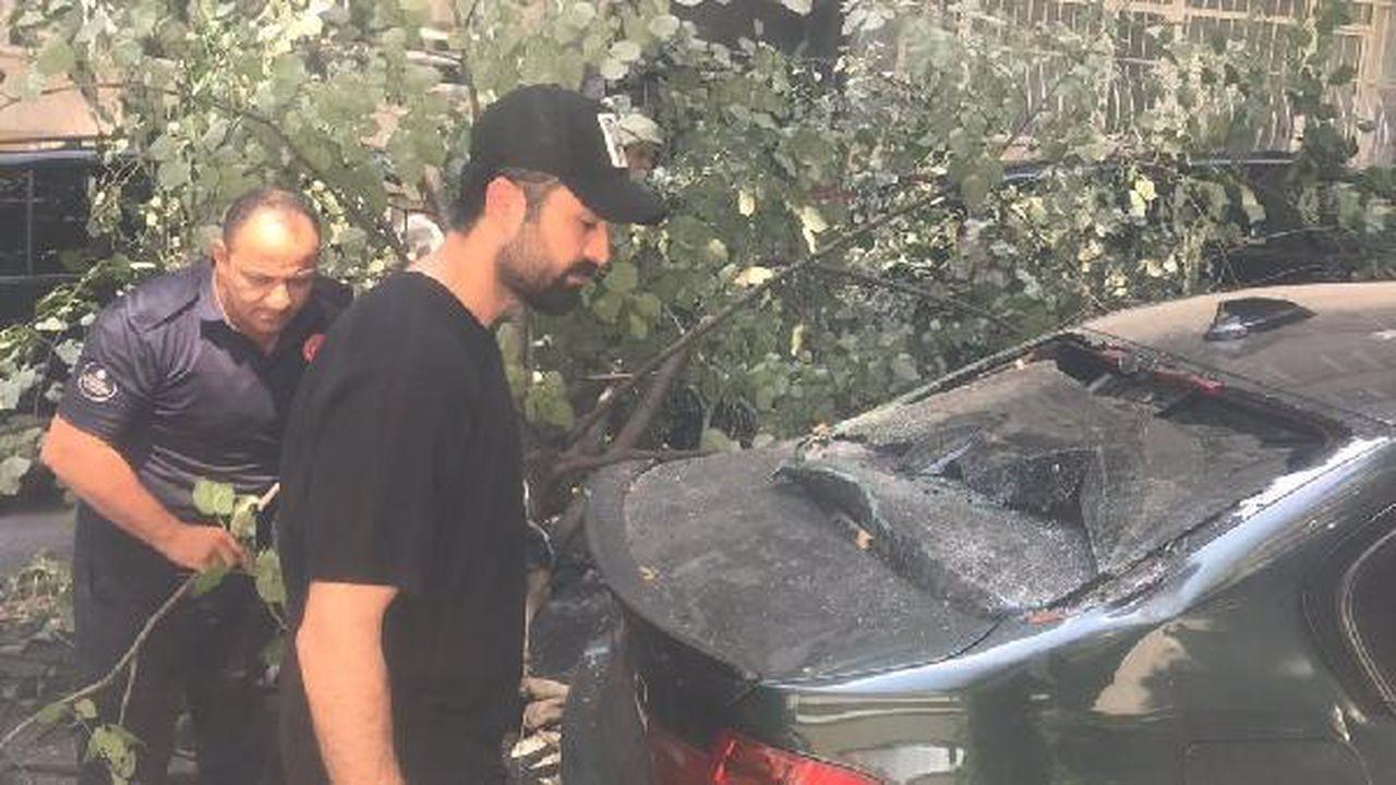 Oyuncu Tolga Sala'nın otomobilinin üzerine ağaç devrildi