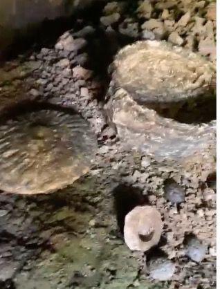 Çobanın keşfettiği mağarada binlerce yıllık 'peynir tatlısı' bulundu - Sayfa 4