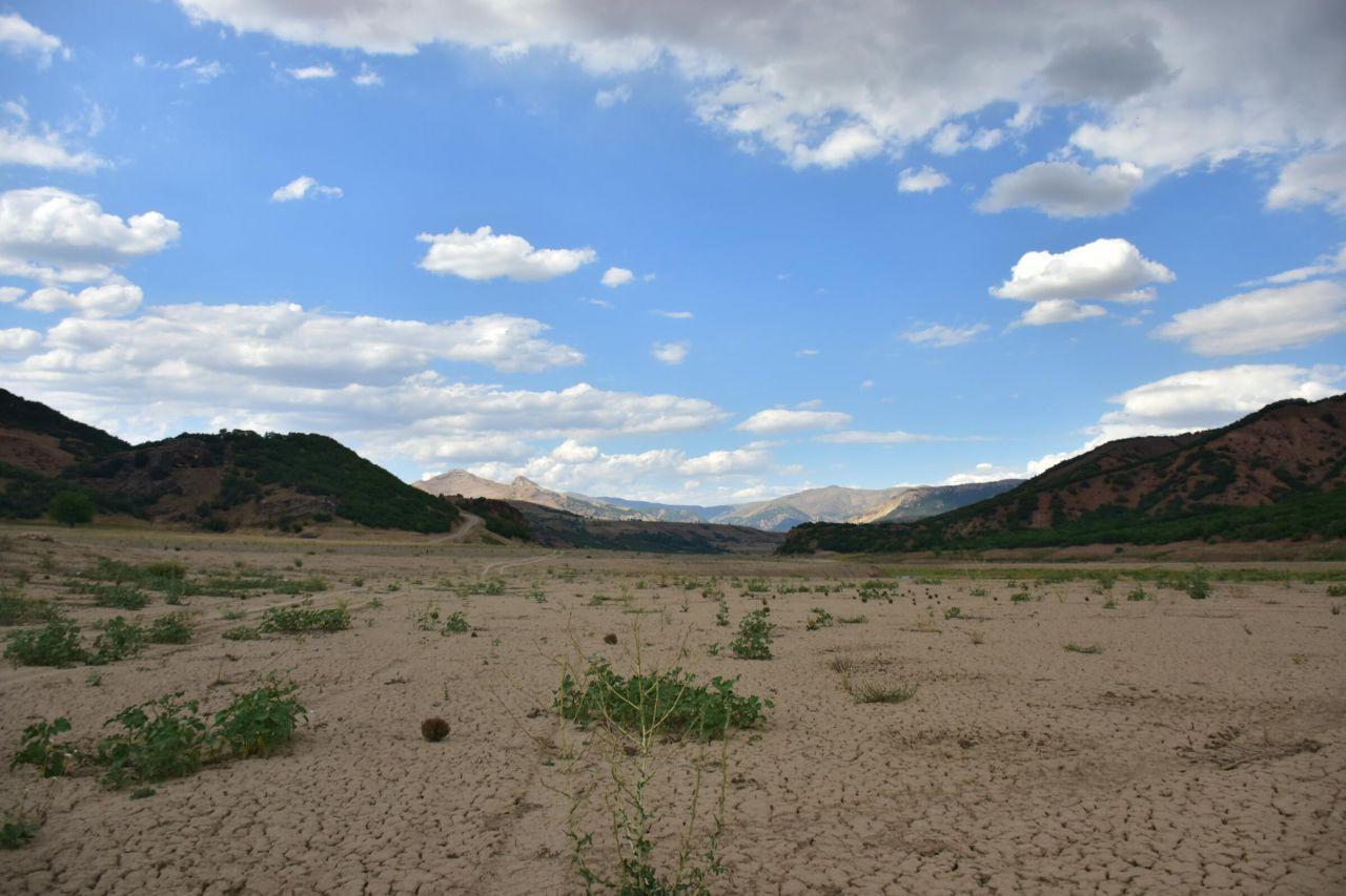 Bingöl'de kuraklık: Ekolojik kırımla karşı karşıyayız - Sayfa 1