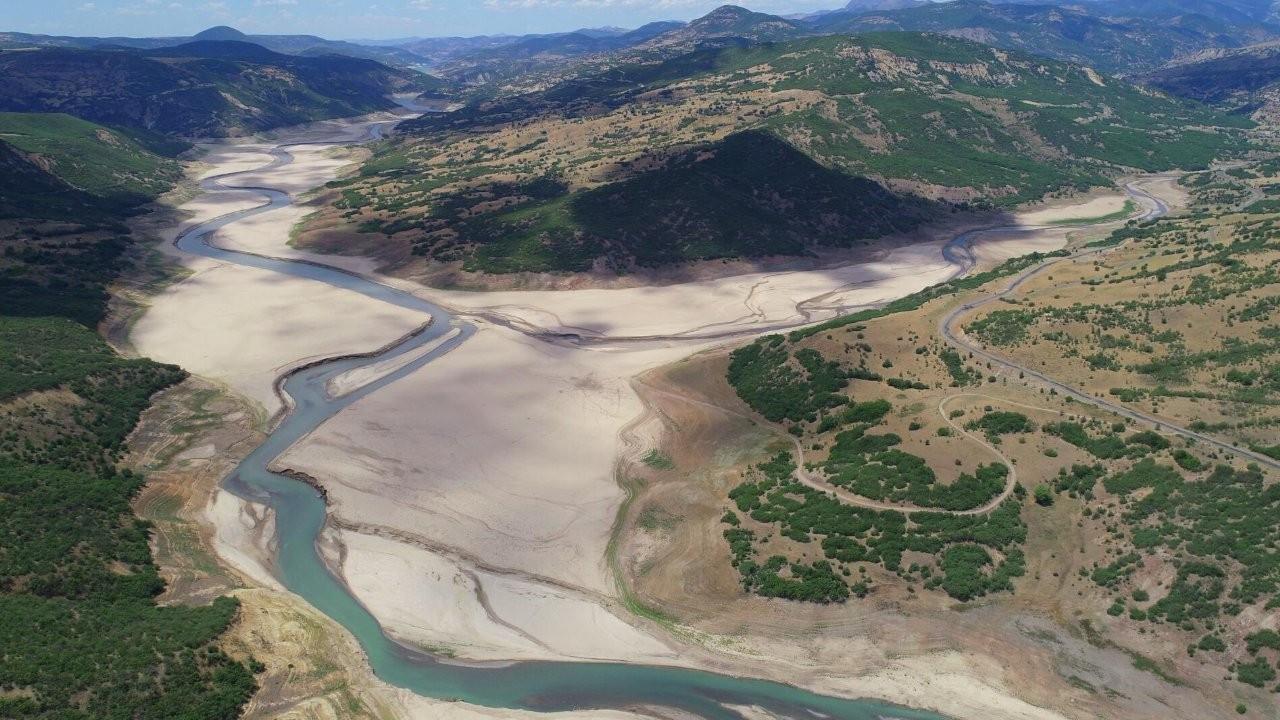 Bingöl'de kuraklık: Ekolojik kırımla karşı karşıyayız