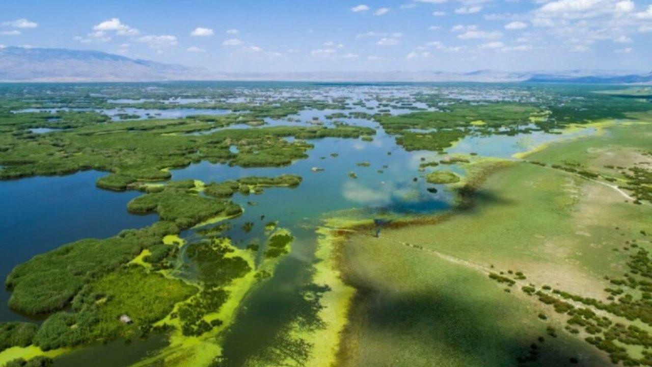 Eber Gölü kuruyor, göçmen kuşlar artık gelmiyor