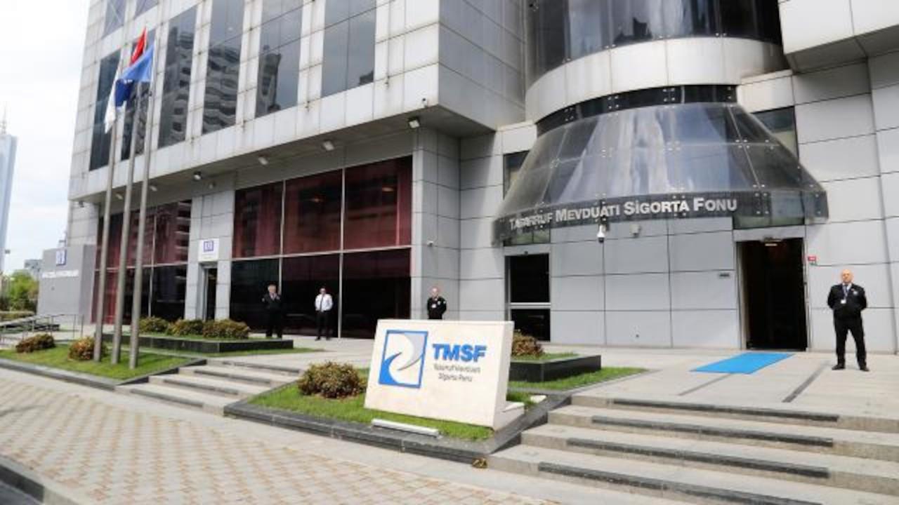 Tasarruf finansman şirketlerinin tasfiyesini TMSF yönetecek