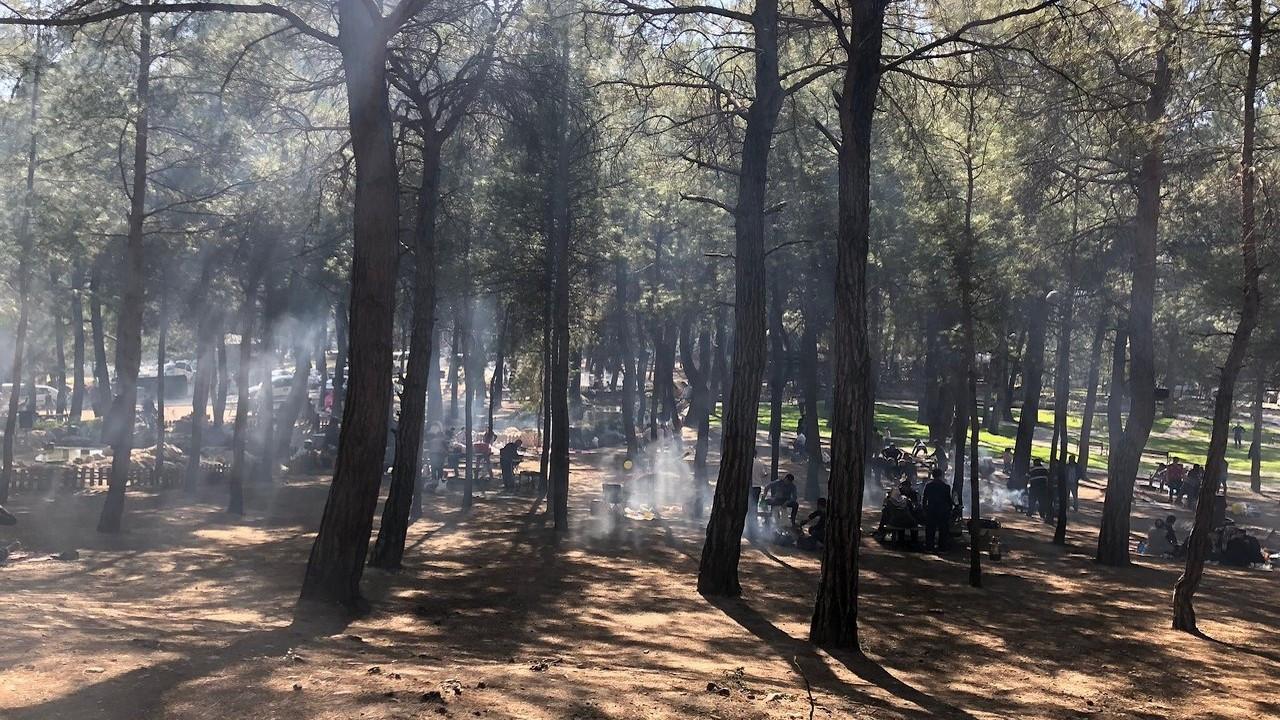 9 ilde ormanlara giriş yasaklandı