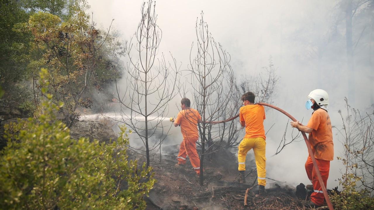 Alanya'daki yangın söndürüldü, 4 hektar orman kül oldu