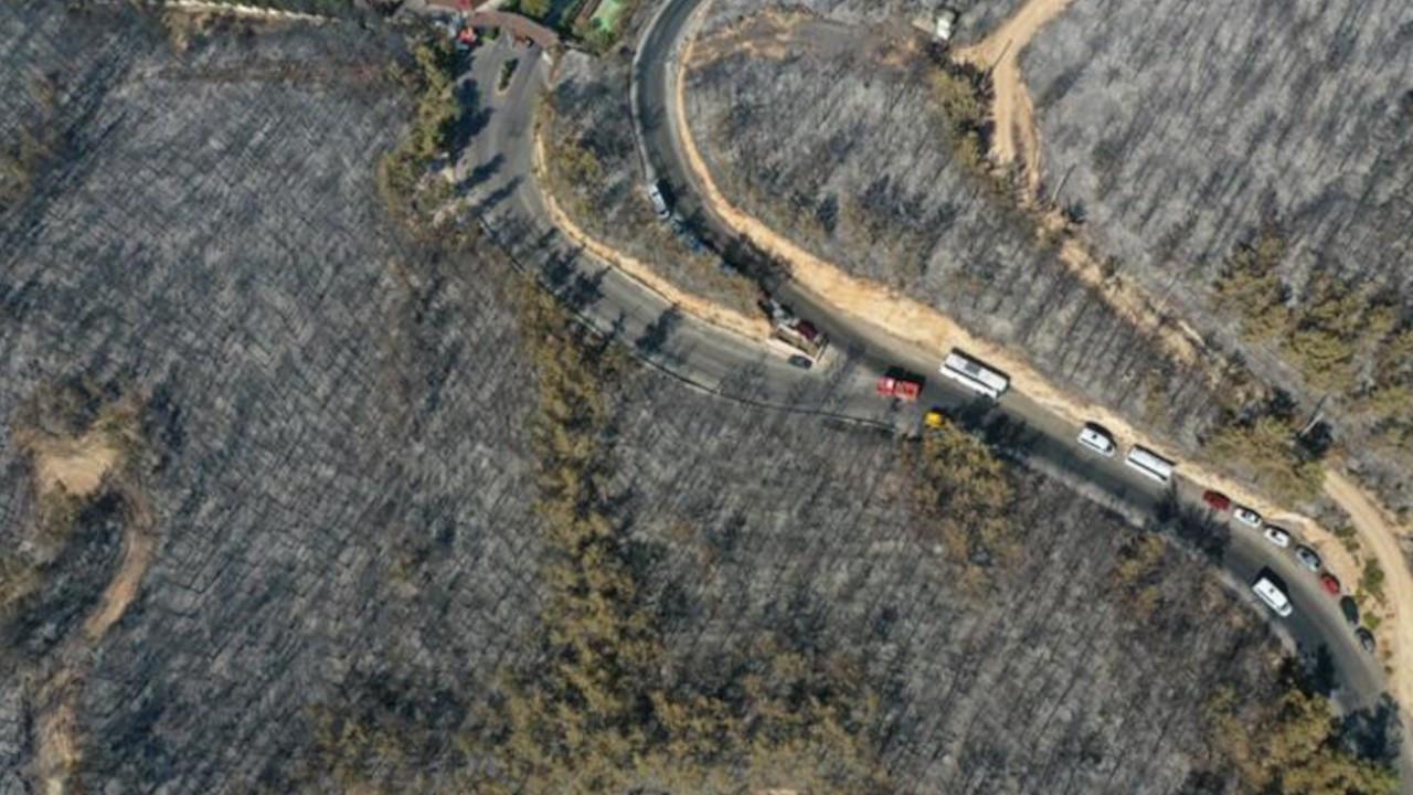 Bodrum yangını: 80 hektar orman alanı yok oldu