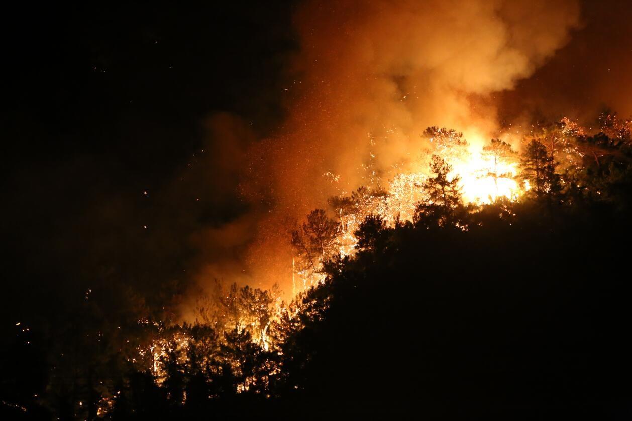 Yangınlar bitmiyor: Memleketten kayıp manzaraları... - Sayfa 1