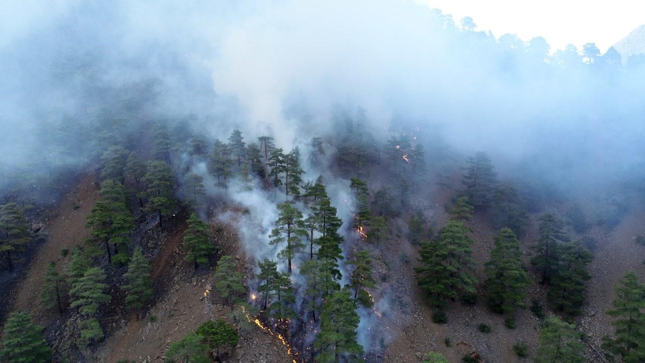 Kayseri Aladağlar'daki yangın kontrol altına alındı