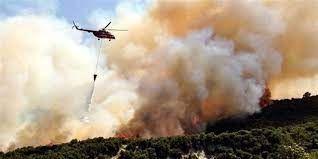 Orman Bakanlığı'ndan yangınlarla ilgili 12 soru 12 yanıt - Sayfa 3