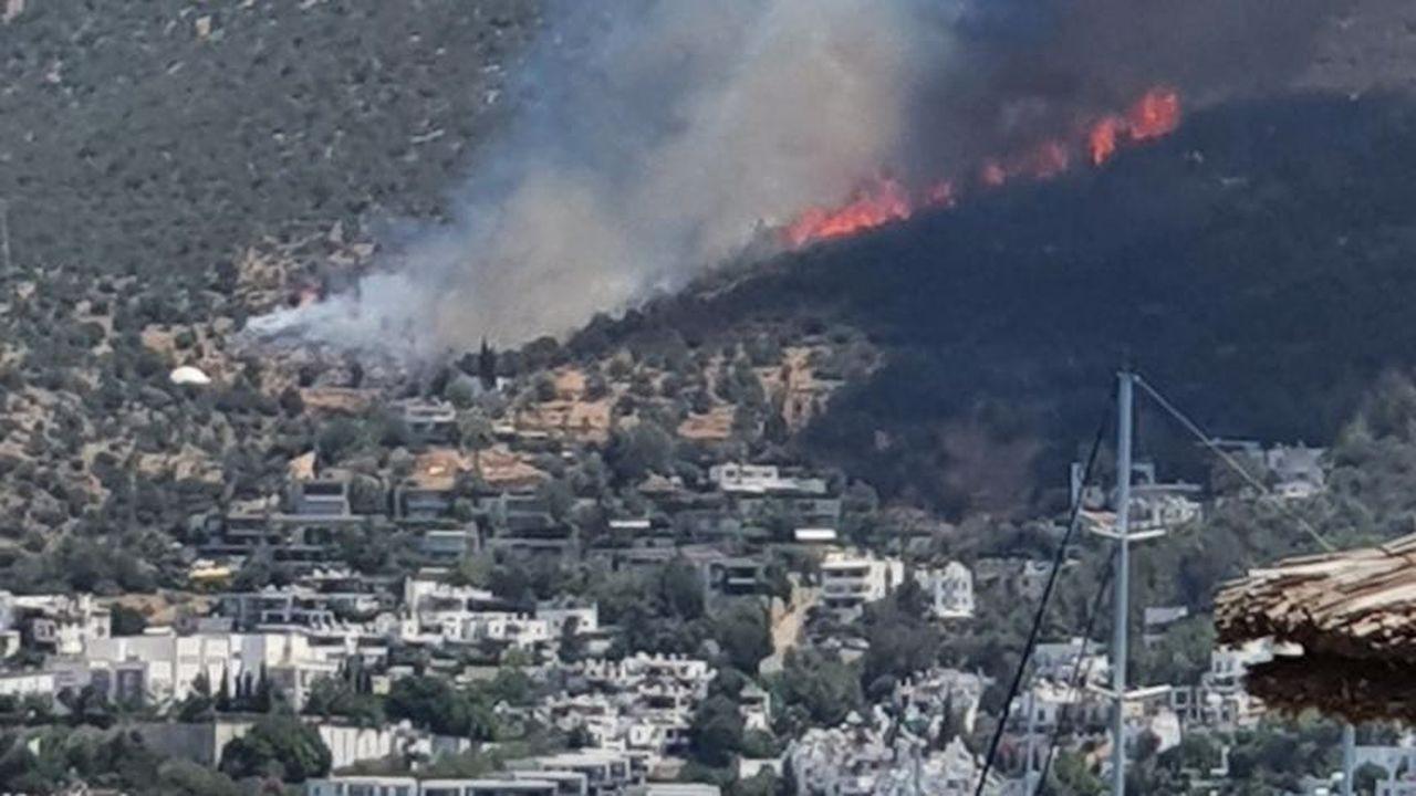 Zülfü Livaneli: Rüzgâr ters döndü, yangın süratle Bodrum'a geliyor