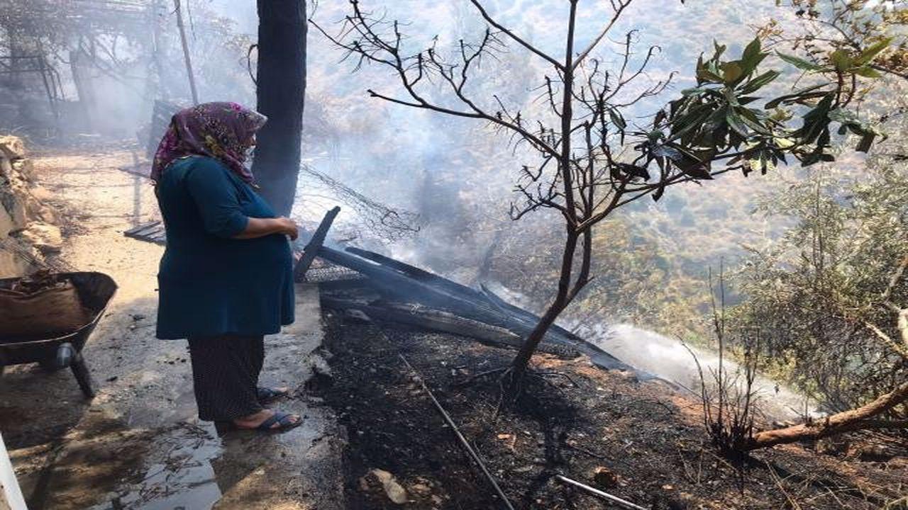 Bodrum ve Hatay'da yeni yangınlar çıktı