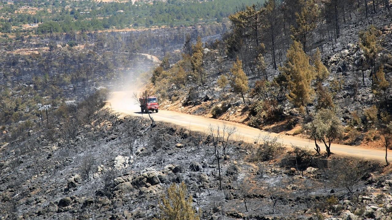 Mersin'de 3 gündür süren orman yangını kontrol altına alındı