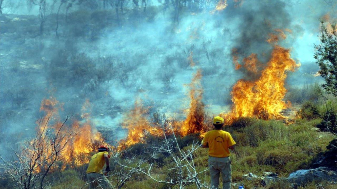 Dersim Barosu: Yangınların kontrolünde ihmali olanlar yargılanmalı