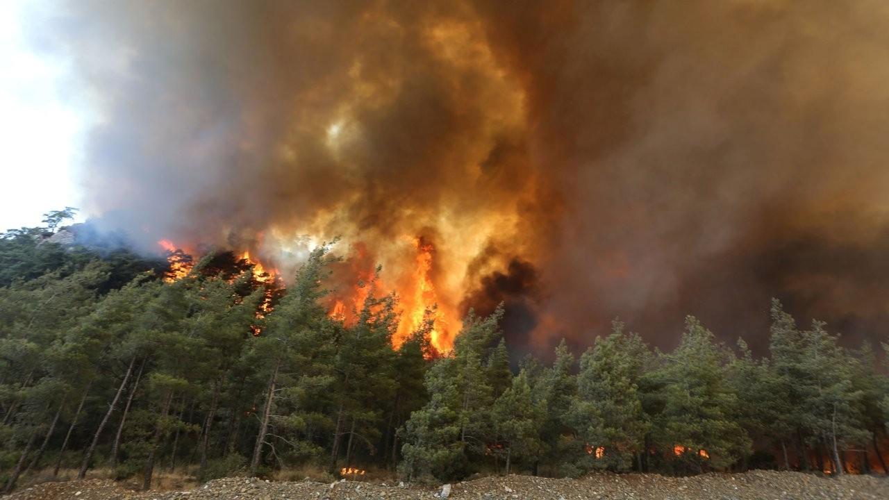 Rusya: Türkiye'ye yangınla mücadele için 11 hava aracı gönderilecek