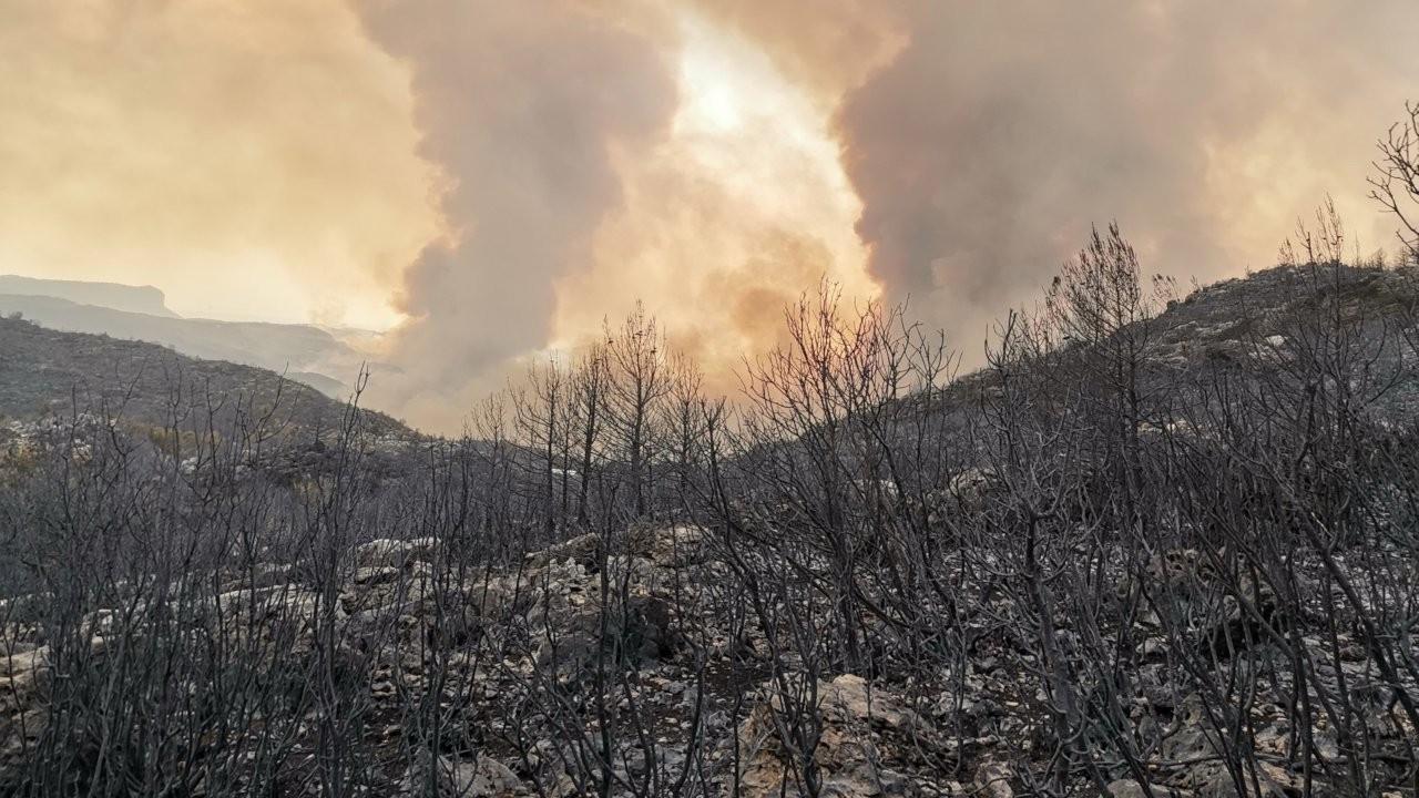 Manavgat yangını beşinci gün: Can kaybı yediye yükseldi