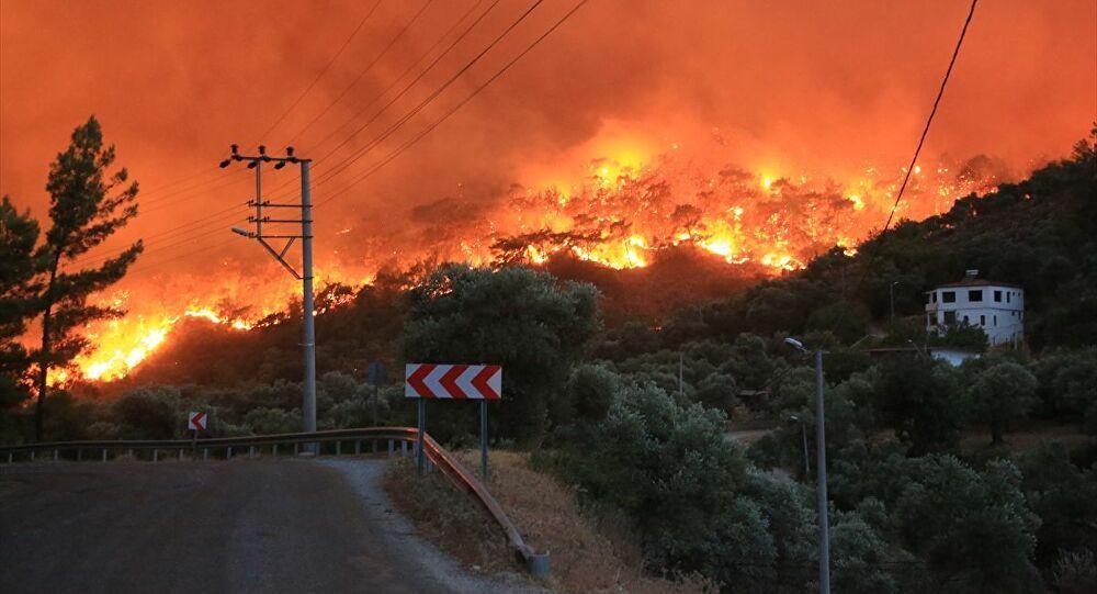 Muğla, Antalya, Mersin, Dersim... Orman yangınlarında son durumlar - Sayfa 4