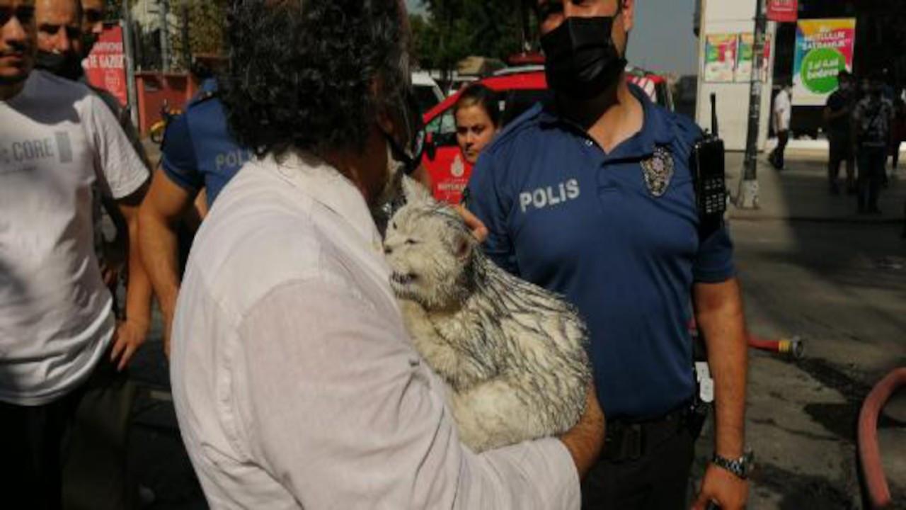 Bahçelievler'de yanan binadan kedisini kurtardı