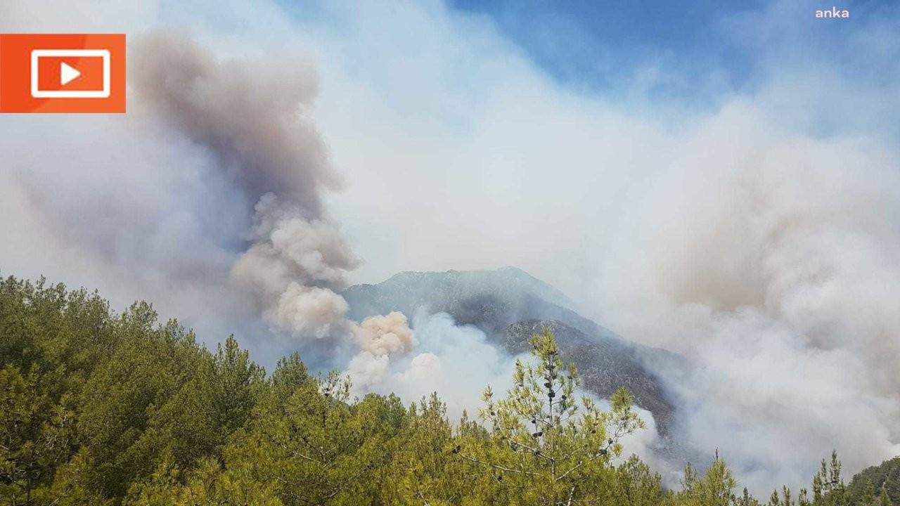 Köyceğiz yangını durdurulamıyor: Çayhisar Mahallesi boşaltılıyor