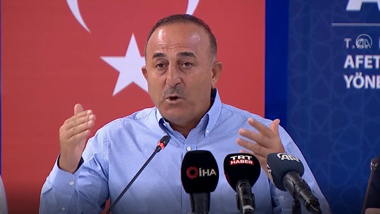 İddia: Çavuşoğlu elçi krizi sırasında 'Gitmek zorunda kalırım' dedi