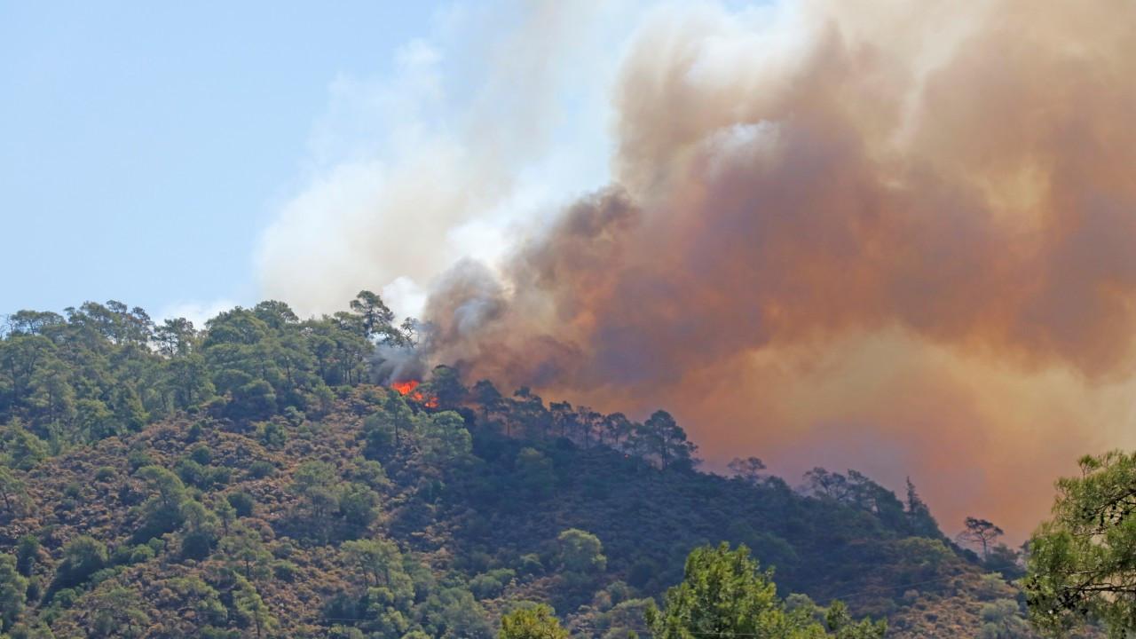 Köyceğiz'de yangınların tehdit ettiği bir mahalle daha boşaltıldı