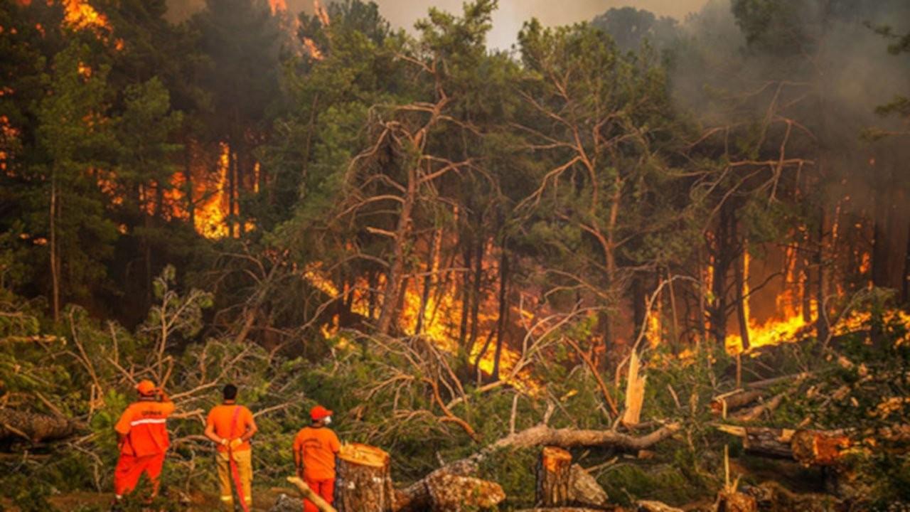 '6 ilde 13 orman yangınını kontrol altına alma çalışmaları sürüyor'