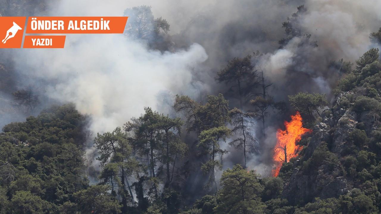Meclis'in yasama karnesi – Orman yangınlarına ortak olmak