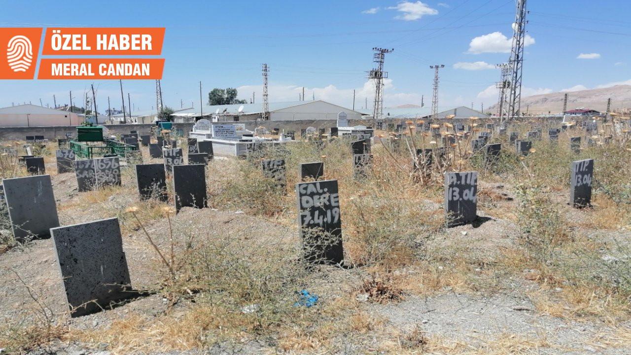 Kimsesizler mezarlığında kimliksiz mezar taşları: Batsın bu dünya