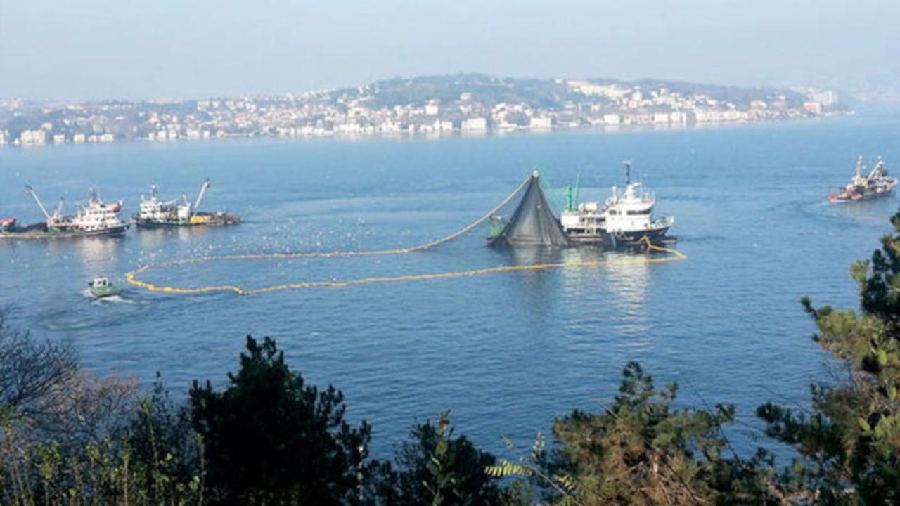 Müsilaj tartışması: 'Marmara'da av sezonu ertelensin'