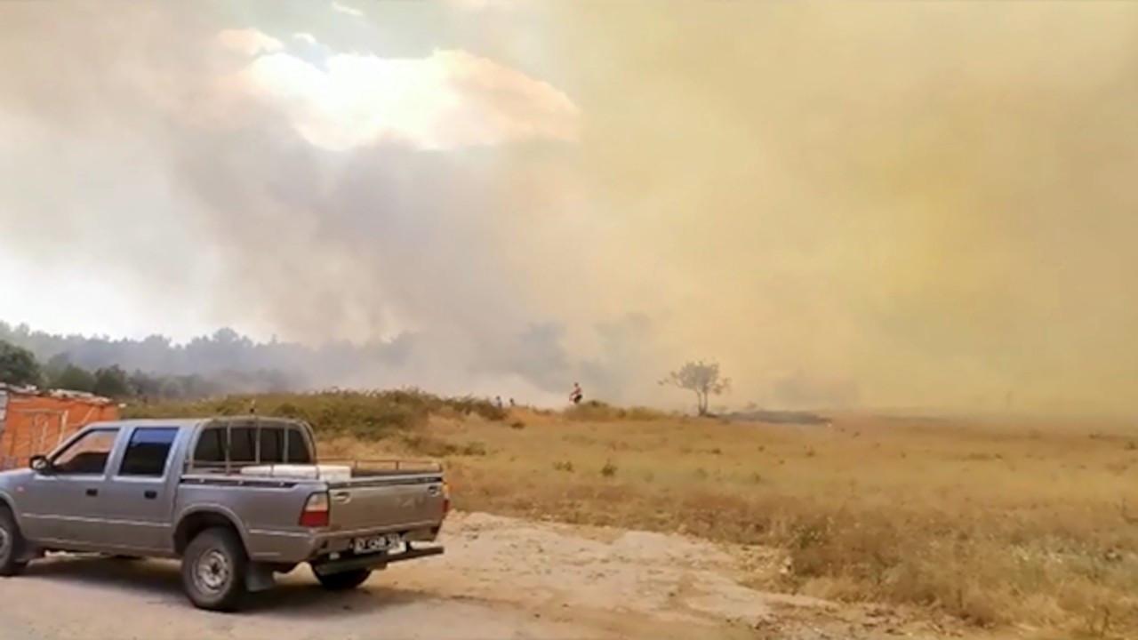 Manavgat'ta ormanlık alanda yangın