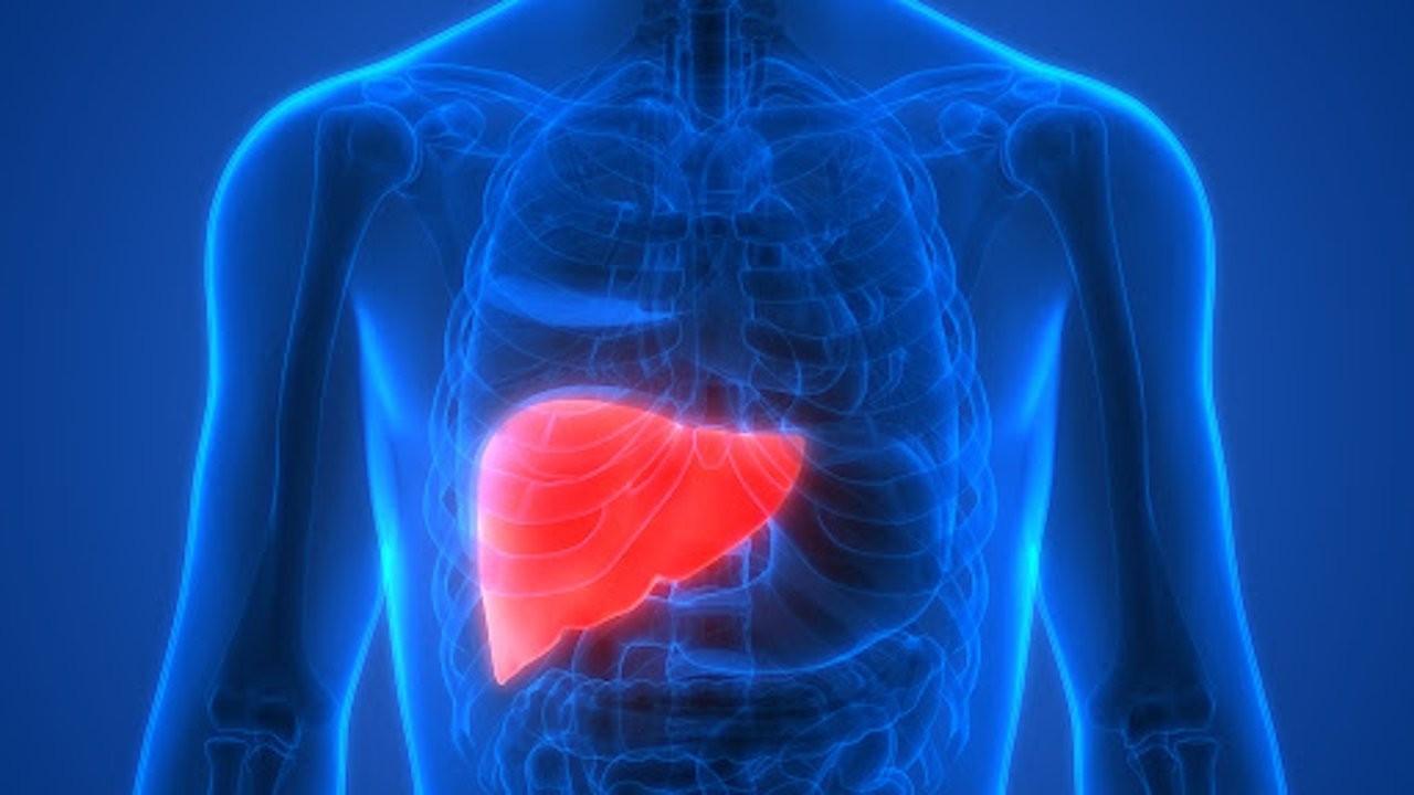 Karaciğerin alarm verdiğini gösteren 10 işaret