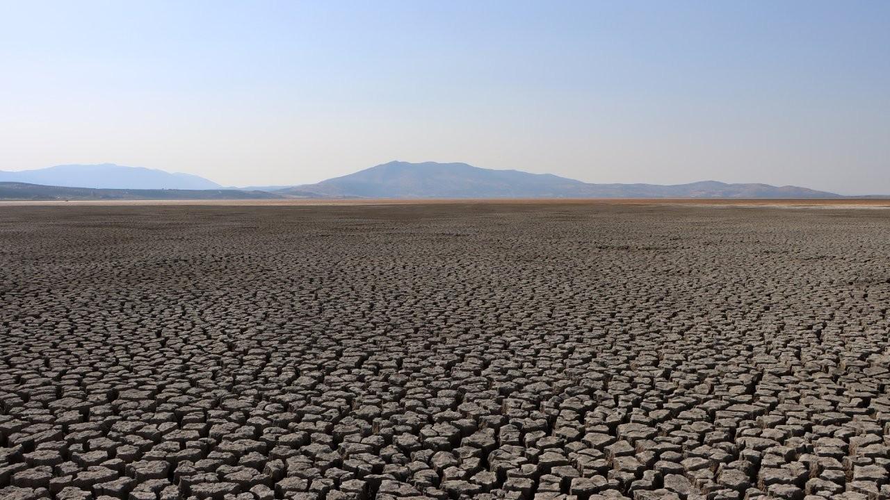 Kaliforniya'da kuraklık nedeniyle acil durum ilan edildi