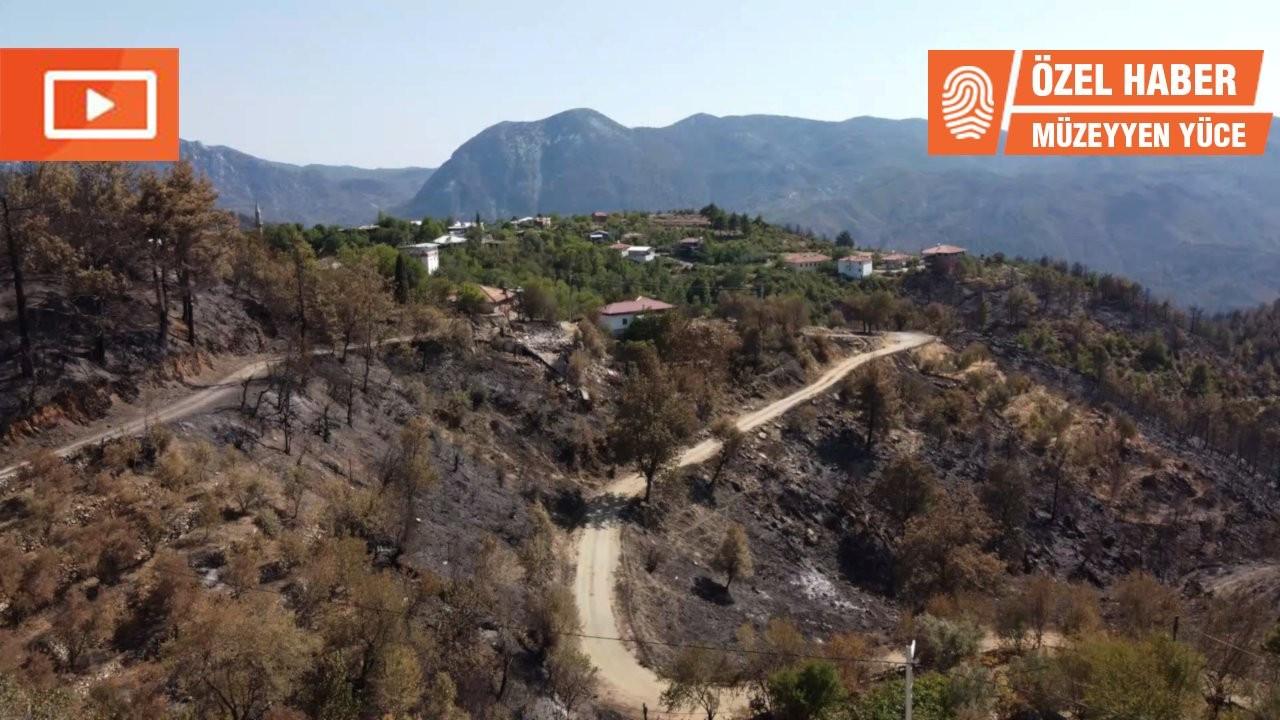 Manavgat'ta yangının ardından: 'Böyle felaket görmedik'