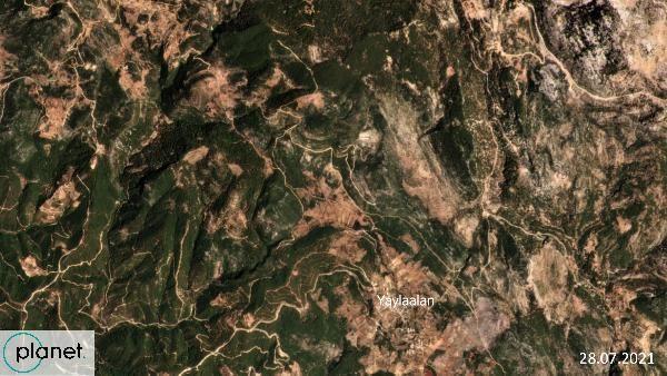 Greenpeace yanan alanların uydu görüntülerini paylaştı - Sayfa 1