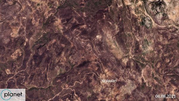 Greenpeace yanan alanların uydu görüntülerini paylaştı - Sayfa 2