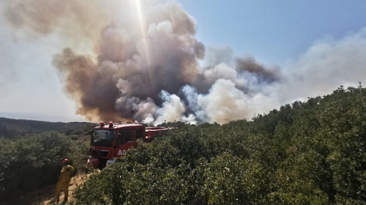 Seydikemer ve Ezine'de çıkan orman yangınları söndürüldü