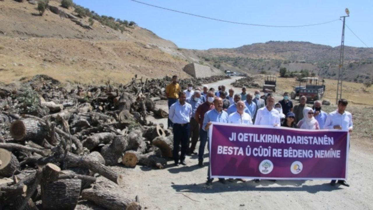 Namaz Dağı'ndaki ağaç kıyımı protesto edildi