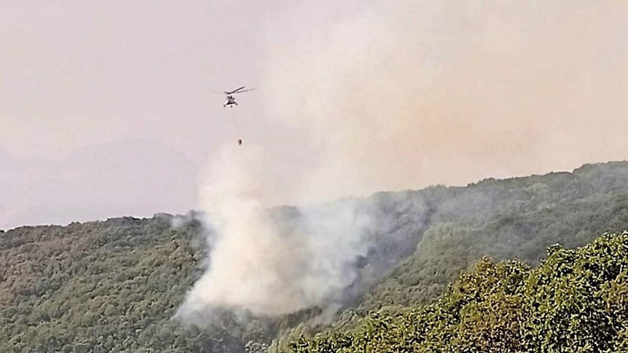 Dersim'deki yangına 12 gün sonra havadan müdahale