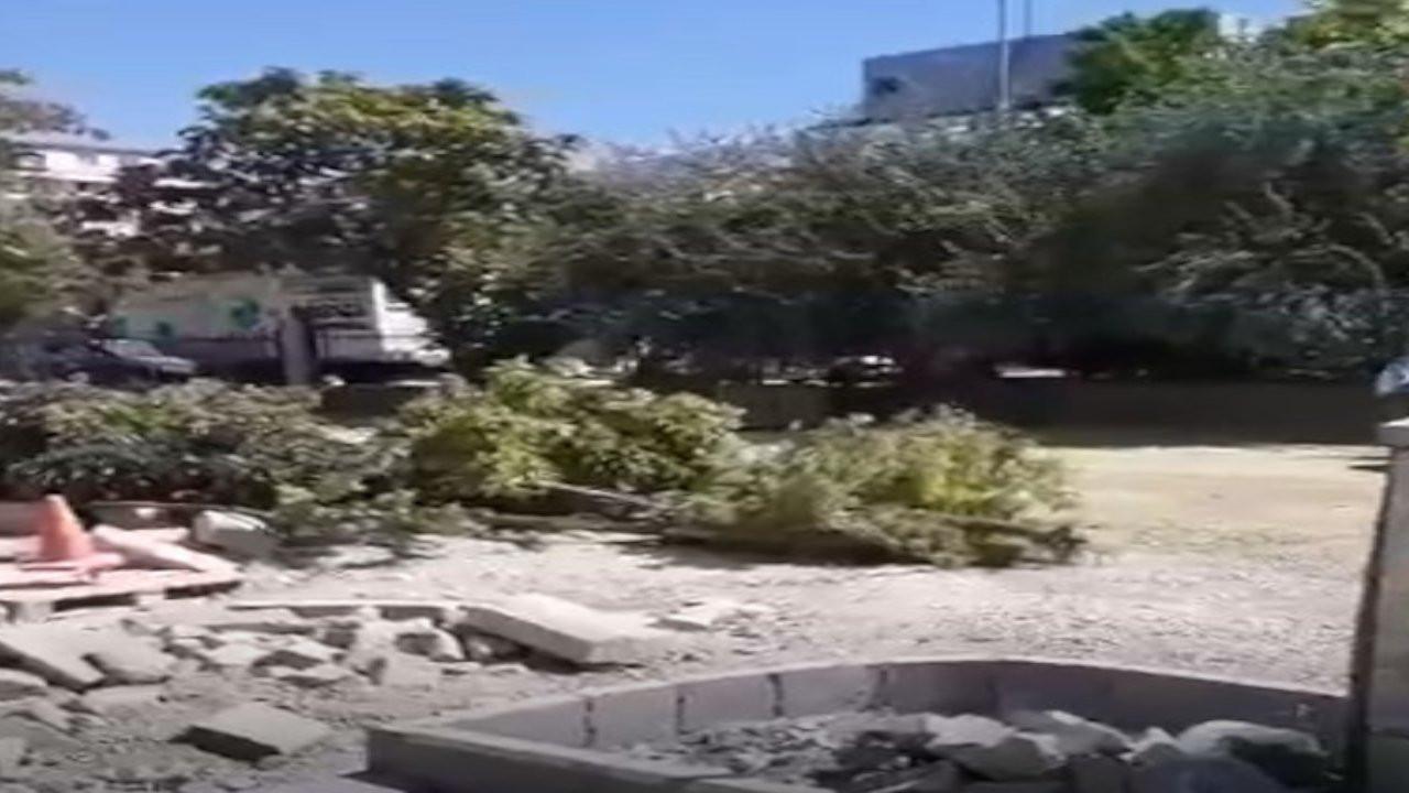 Kayyımın yönettiği İpekyolu Belediyesi ağaçları kesiyor