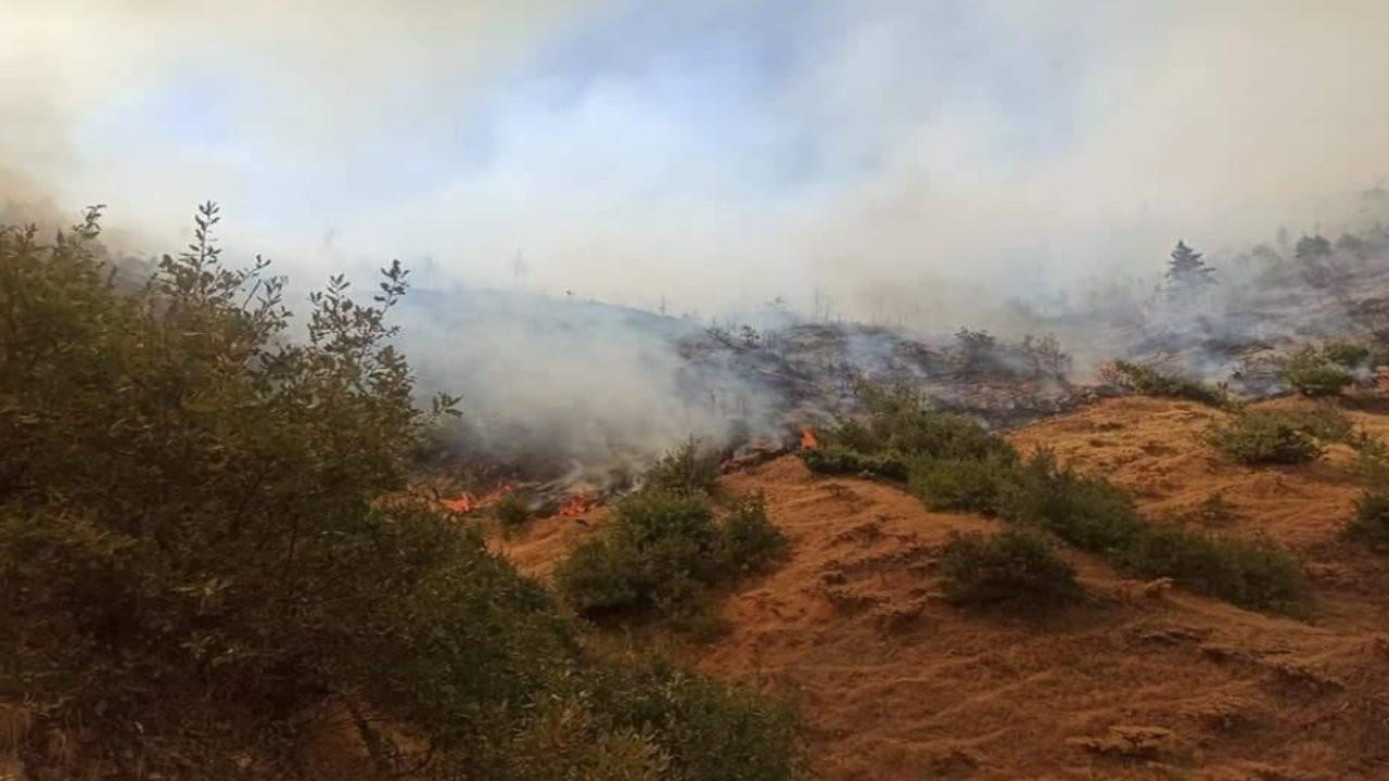 Bitlis'te 6 noktada orman yangını devam ediyor