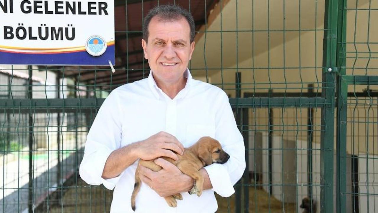 Mersin'de 'köpeklerden ürken' polis, Başkan Seçer'i şikayet etti