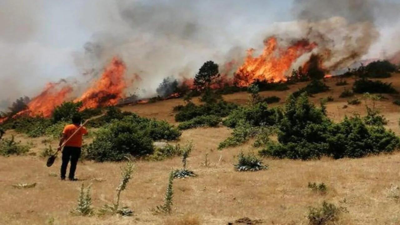 OGM: 9 ilde 25 yangın kontrol altında