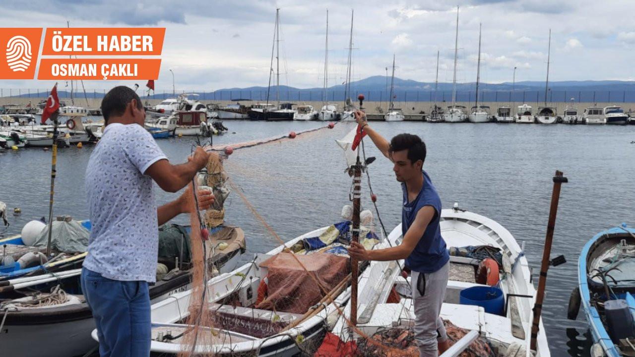 Balıkçı balık değil salya çekiyor