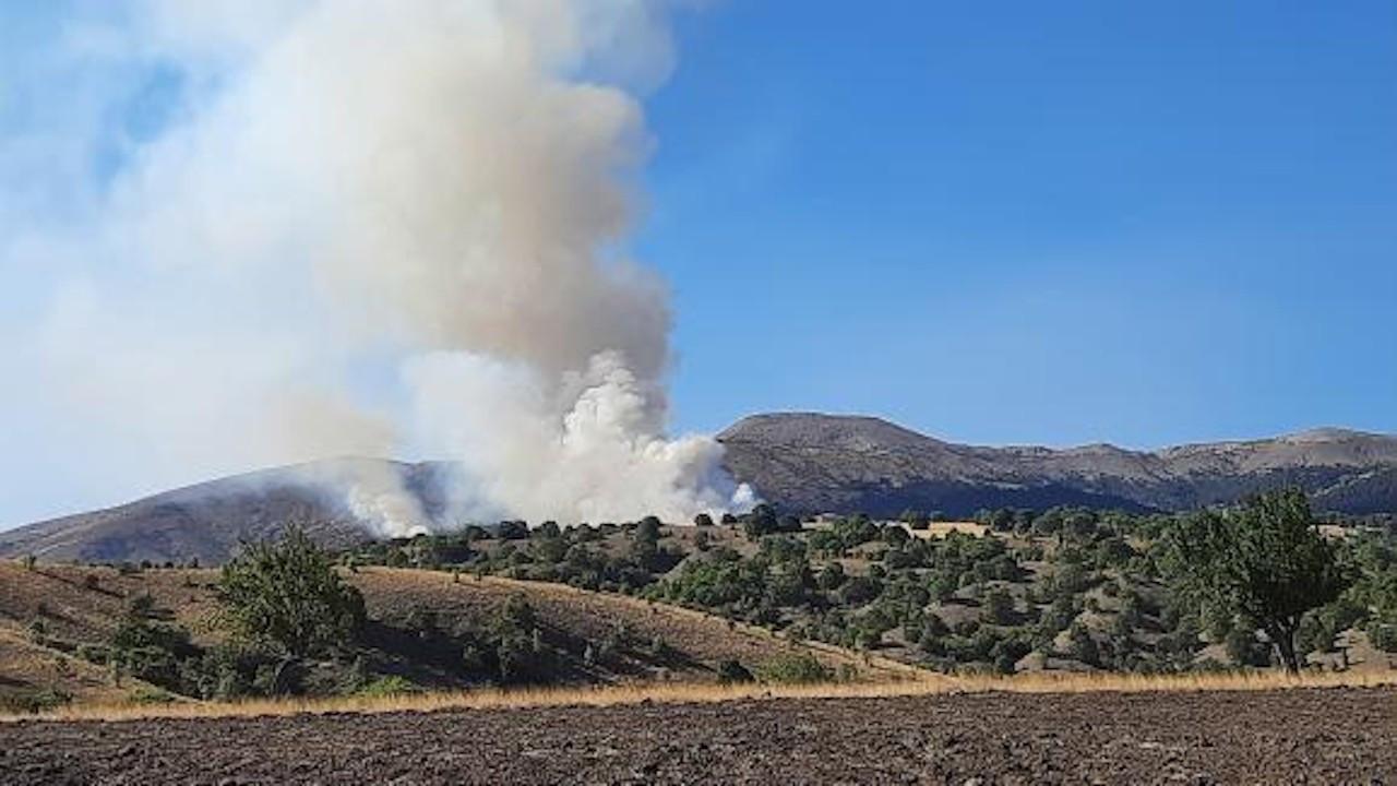 Ankara Çubuk'ta orman yangını: 1 kişi gözaltında