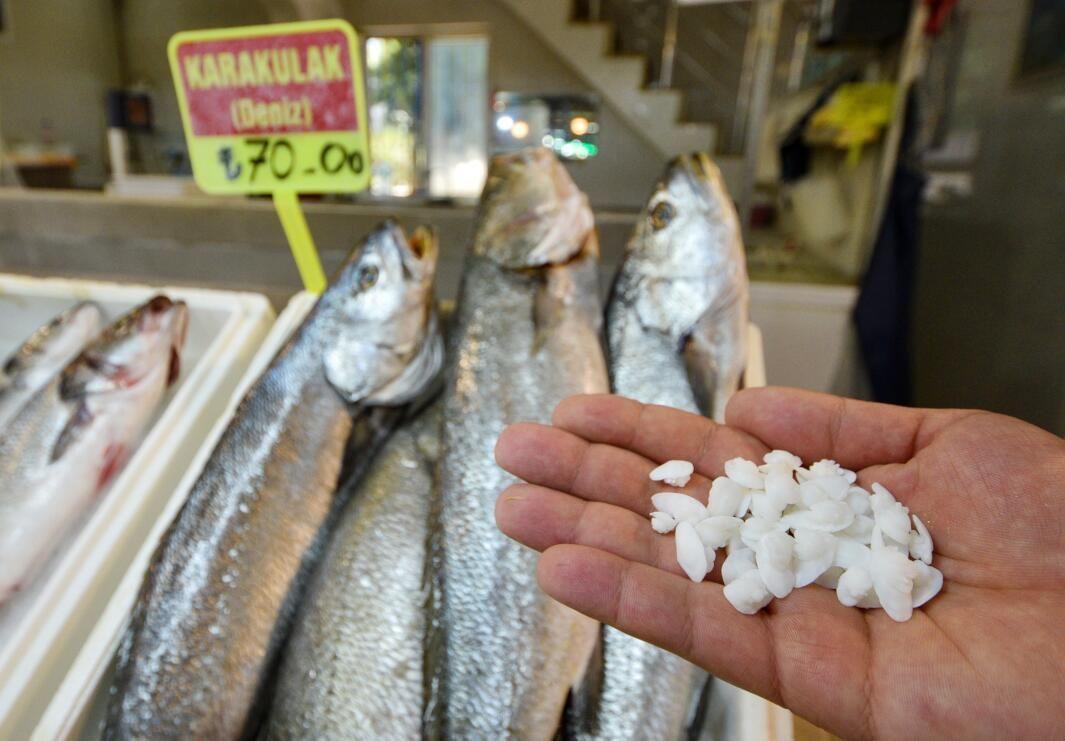 Balığın kilosu 70, kafasındaki taşın kilosu 600 lira - Sayfa 3