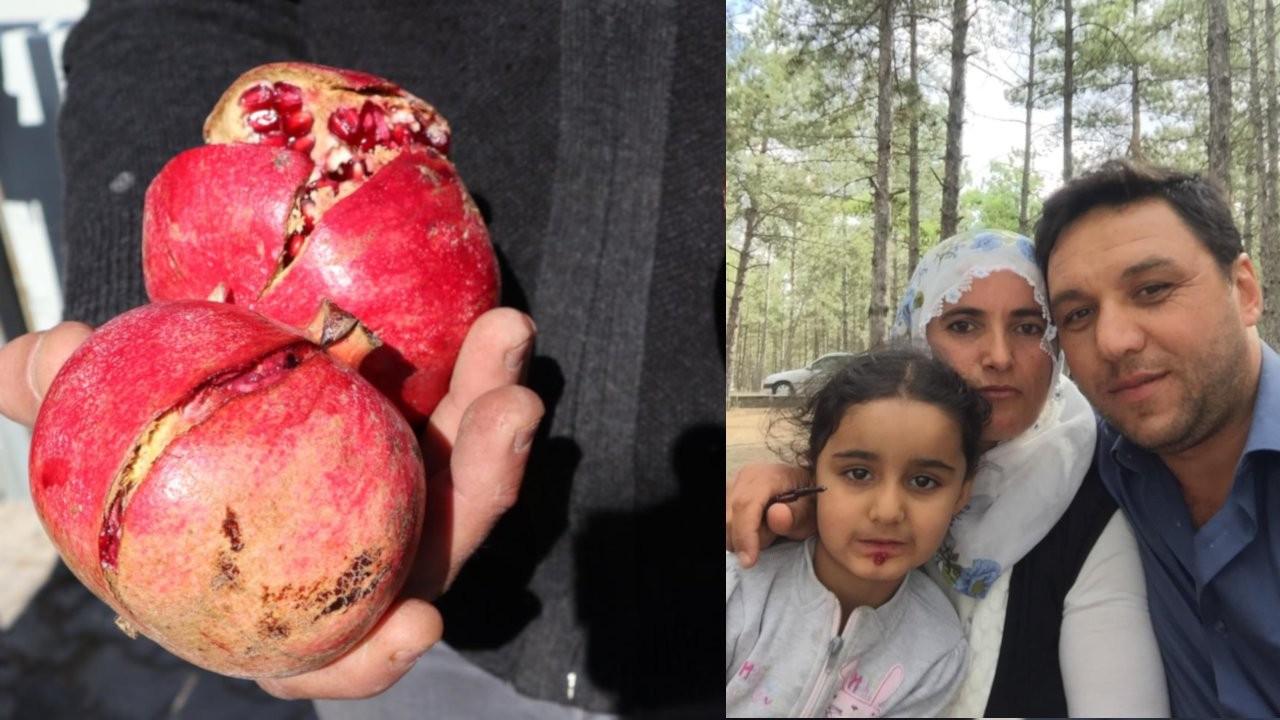 Nar yedikten sonra ölen çocuğun raporu: Tarım ilacından