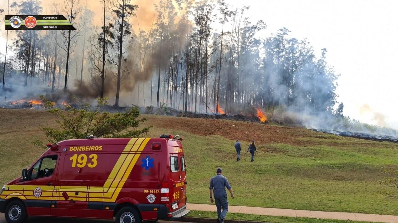 Brezilya'da uçak düştü: 7 kişi öldü