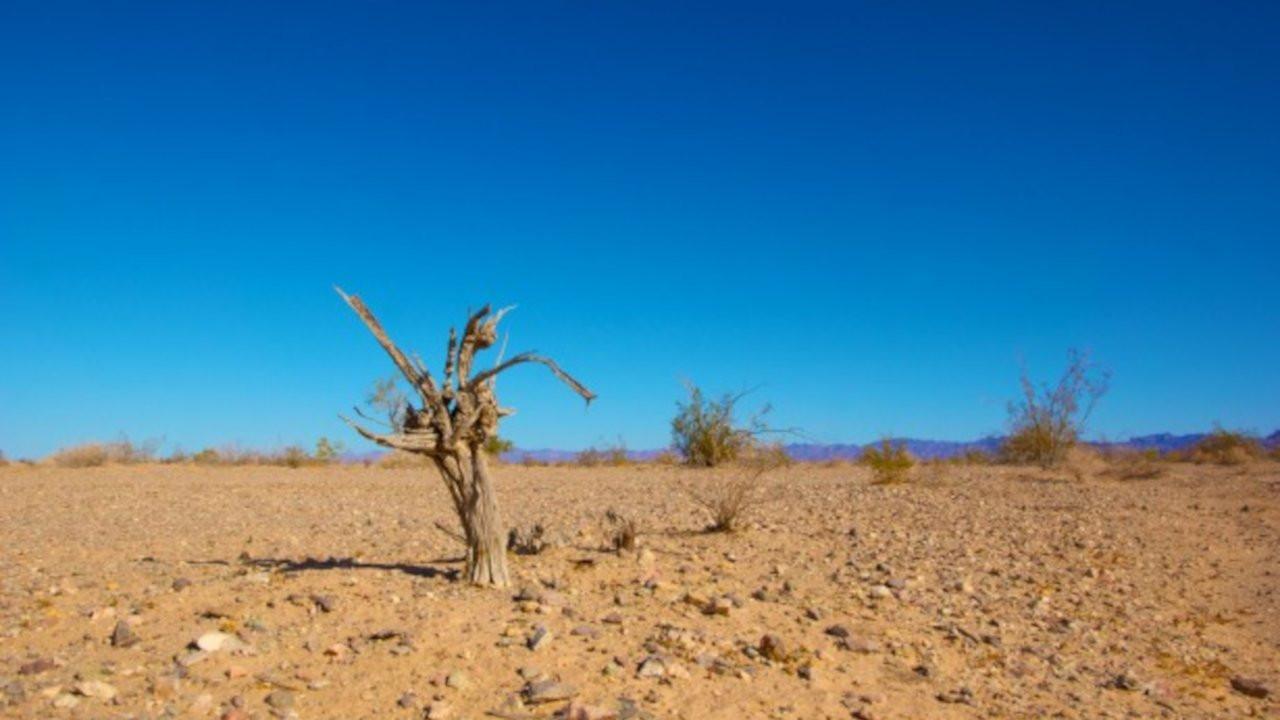 Dünya Bankası: İklim değişikliği 216 milyon insanı göçe zorlayabilir