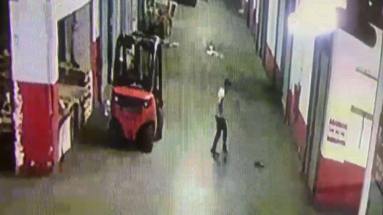 Bayrampaşa'da yavru kediyi öldüren esnaf gözaltına alındı